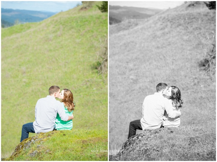 nicolebriannphotography_engagement_D_and_L_0008